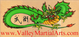 valley_martial_arts